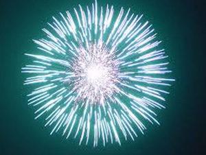 Chrysanthemum-fireworks