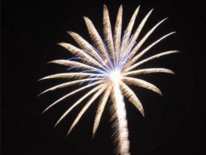 Palm-fireworks